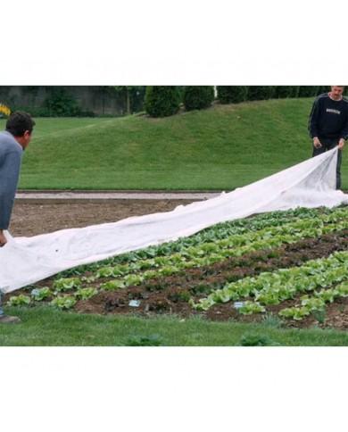 Bac à plantes Escargot angulaire 78 x 78 x 60 cm