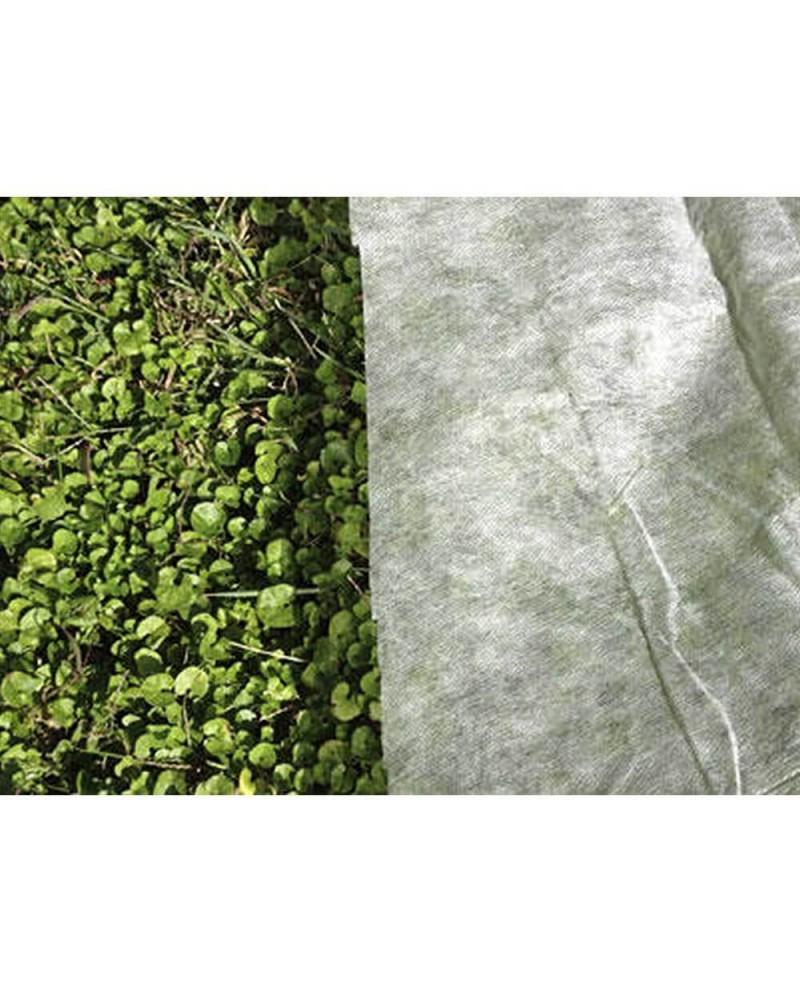 Bac à plantes Dominus 50 x 50 x 50 cm