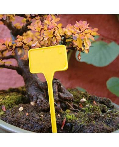 10 étiquettes à planter en plastique (15cm)